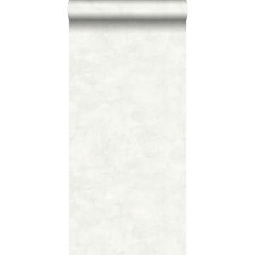 Tapete Betonoptik Hellgrau und Weiß