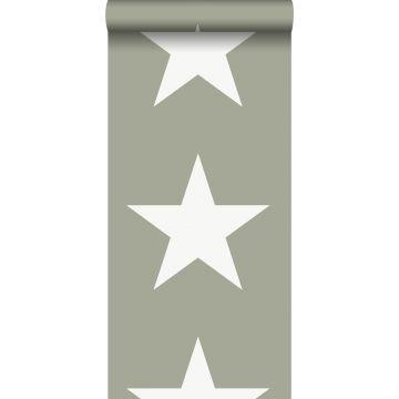 Tapete Sterne Armeegrün
