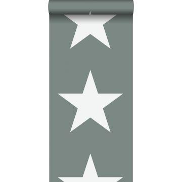 Tapete Sterne Graugrün