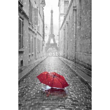 Fototapete Paris Ansicht Grau und Rot