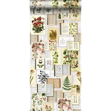 XXLVliestapete Seiten aus botanischen Büchern Crème-Beige, Grün, Braun und Ockergelb