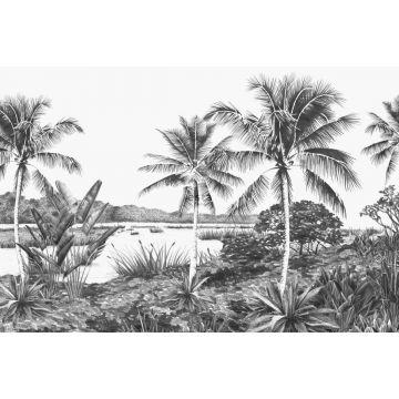 Fototapete tropische Landschaft mit Palmen Schwarz und Weiß