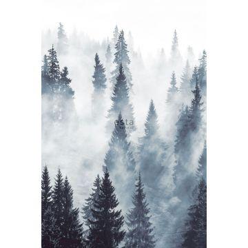 Fototapete nebliger Wald Grün