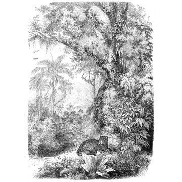 Fototapete Dschungelmuster Schwarz-Weiß