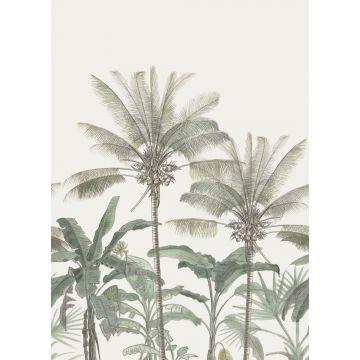 Fototapete Palmen Hellbeige und Graugrün