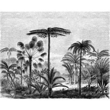 Fototapete tropische Landschaft mit Palmen Schwarz-Weiß