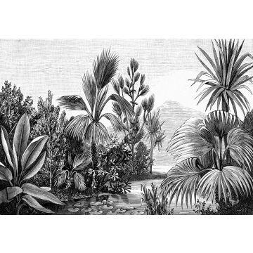 Fototapete tropische Landschaft Schwarz-Weiß