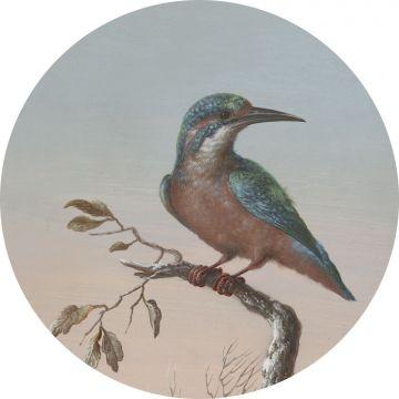selbsklebende runde Tapete Eisvogel auf Zweig Abendrot