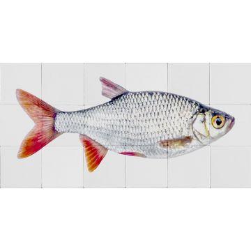 selbsklebende Wandtattoo Fisch Grau und Rot