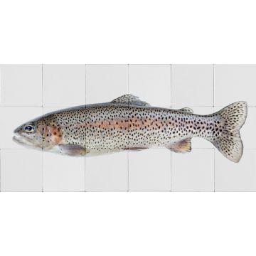 selbsklebende Wandtattoo Fisch Grau und Lachsrosa