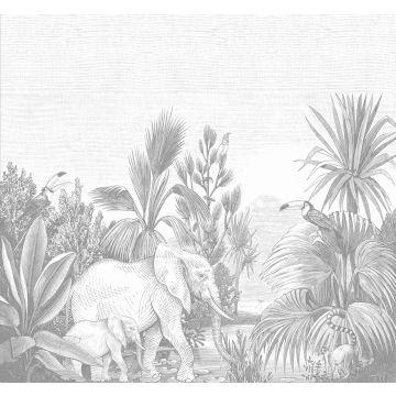 Fototapete Dschungelmuster Grau